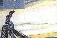 gobi2