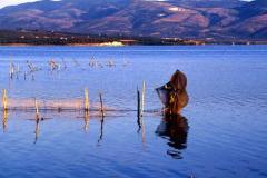 Lago-di-Varano